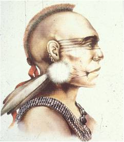 Artist's rendition of Pequot warrior, perhaps the Pequot Sachem Sassacus